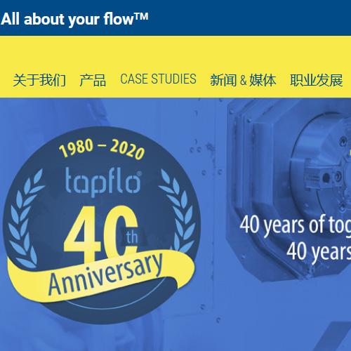 Web design, agency Shanghai, case study Tapflo