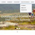 Swedish Chamber of Commerce in China web development